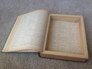 Hollow Book Open 2